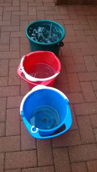 Saving water one bucket at a time!